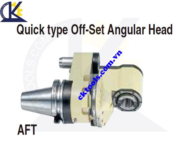 Đầu kẹp dao NIKKEN NBT40-AFT, Holder NIKKEN NBT40-AFT, QUICK TYPE ANGULAR HEAD NBT40-AFT