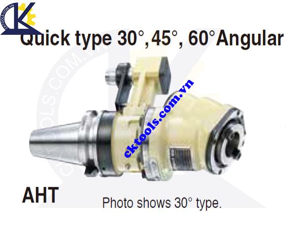 Đầu kẹp dao NIKKEN NBT40-AHT, Holder NIKKEN NBT40-AHT, QUICK TYPE 30, 45, 60 ANGULAR HEAD NBT40-AHT