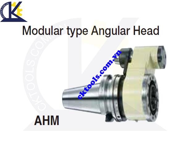 Đầu kẹp dao NIKKEN NBT-AHM, Holder NIKKEN NBT-AHM, MODULAR TYPE ANGULAR HEAD NBT-AHM